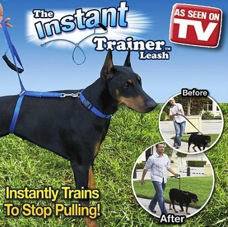 The Instant Trainer Leash for Dogs 6ft - 1