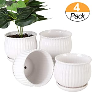 Mother's taste BB Plant pots - 5.5-inch Cylindrical Ceramic Planters with Connected Saucer, Round Modern Ceramic Garden pots - Succulent Medium-Sized Plant pots Set of 4 (Pure White)