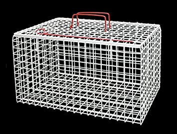 Premium Wire Cat Carrier Basket White Amazon Co Uk Pet Supplies