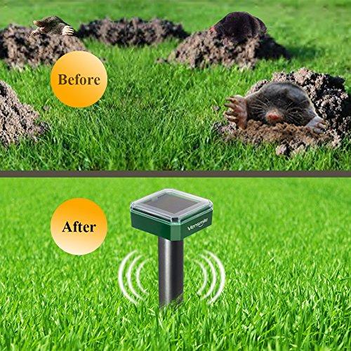 Gopher In Backyard: 2 X VENSMILE Solar Powered Mole Repellent Gopher Repeller
