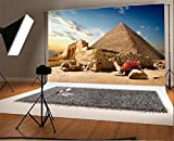 Laeacco 7x5FT Vinyl Backdrop P