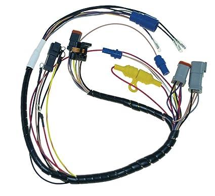 Amazon com: Johnson Evinrude Deutsch Plug Internal Wiring