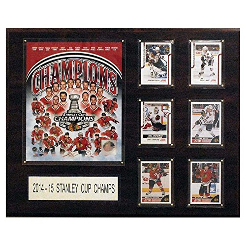 "NHL Chicago Blackhawks Men's 2014-2015 Stanley Cup Champions Plaque, 12""x15"""