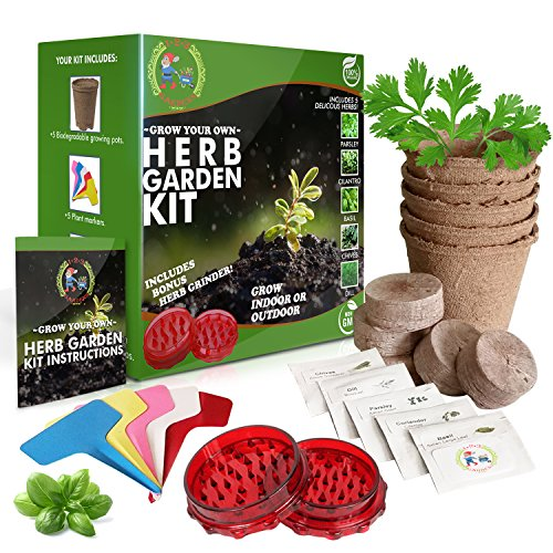 1-2-3 GARDENS- HERB GARDEN STARTER KIT-Grow 5 Delicious Herbs at Home (Parsley, Basil, Chives, Dill,Cilantro)Includes BONUS Herb Grinder- Grow Indoors or Outdoors-Organic and Non-GMO | Great Gift Idea (Garden Craft Kit)