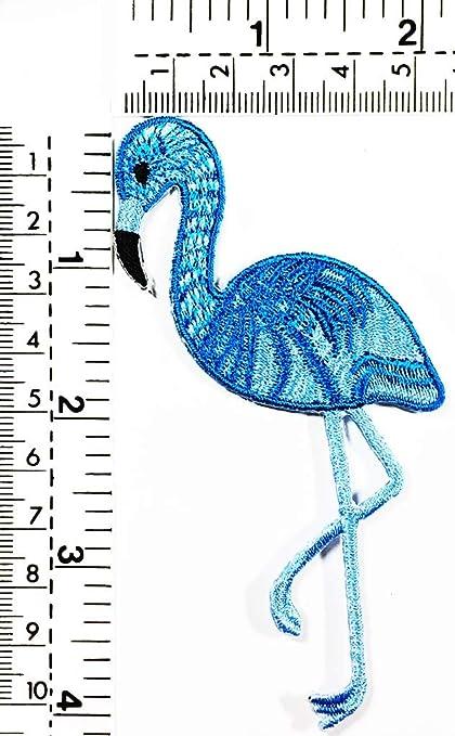 Amazon Com Blue Queen Flamingo Hot Blue Flamingo Bird Zoo Animals