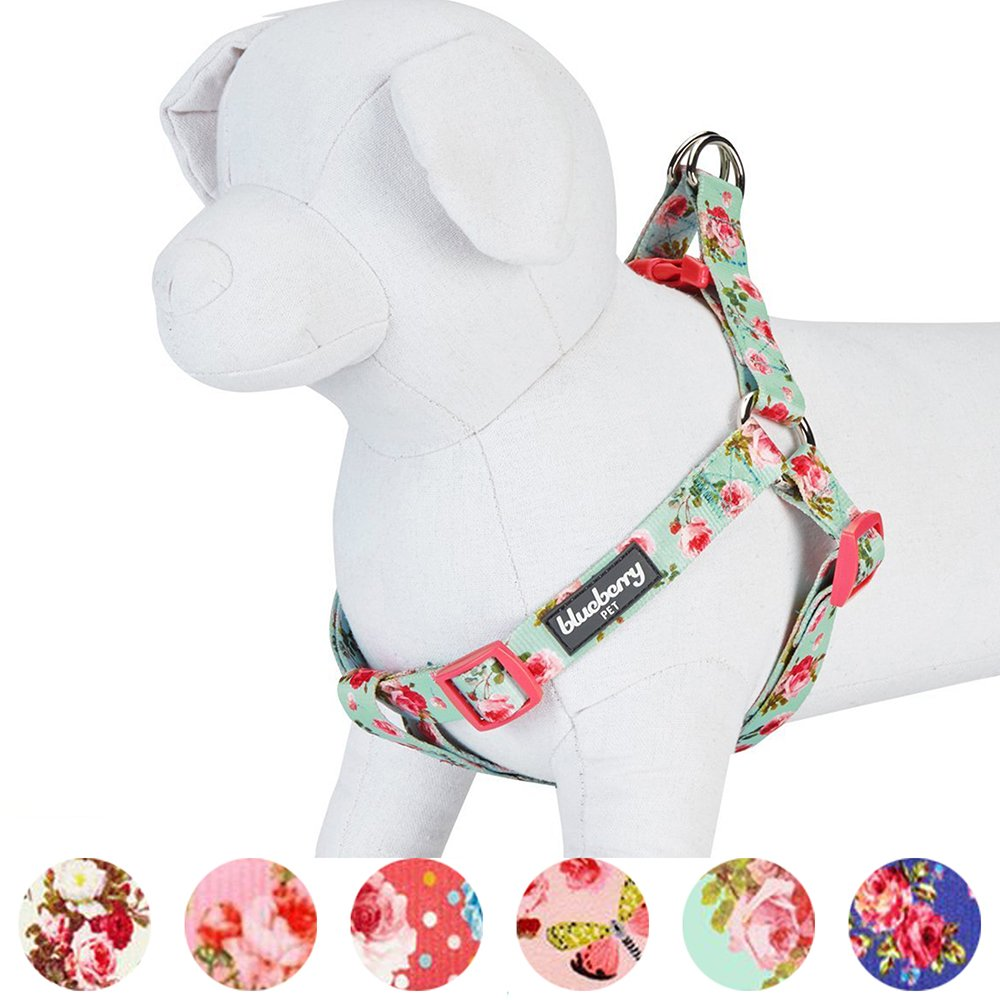 Blueberry Pet Step-in Spring Scent Inspired Floral Rose Print Turquoise Dog Harness, Chest Girth 16.5'' - 21.5'', Small, Adjustable Harnesses for Dogs