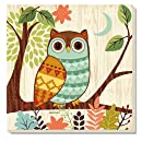 CounterArt Woodland Friends Owl Absorbent Coasters, Set of 4