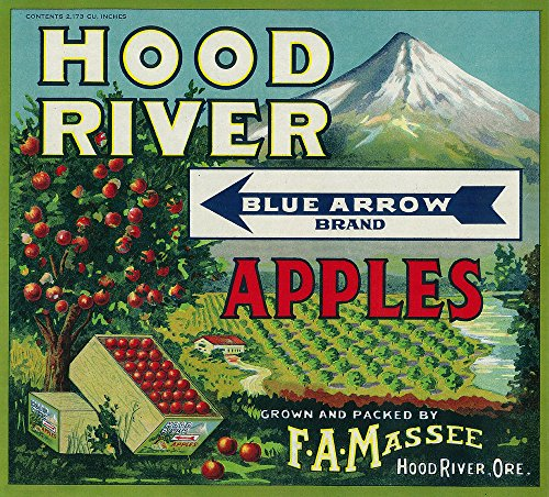 Blue Arrow Apple Crate Label (24x36 Fine Art Giclee Gallery Print, Home Wall Decor Artwork Poster)