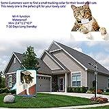 TKSTAR Mini WiFi Pet GPS Tracker, The 2nd Generation Anti- lost Dog/Cat Finder Global GPS/GSM Sim 200h Long Standby, RealtimeTraining Activity Collar, Waterproof Free Tracking Platform & APP TK911