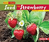 img - for From Seed to Strawberry (Start to Finish: Second Series) book / textbook / text book