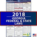 2018 Georgia State and Federal Labor Law Poster - OSHA and Workers' Compensation Compliant 36'' x 24'' - UV Coated