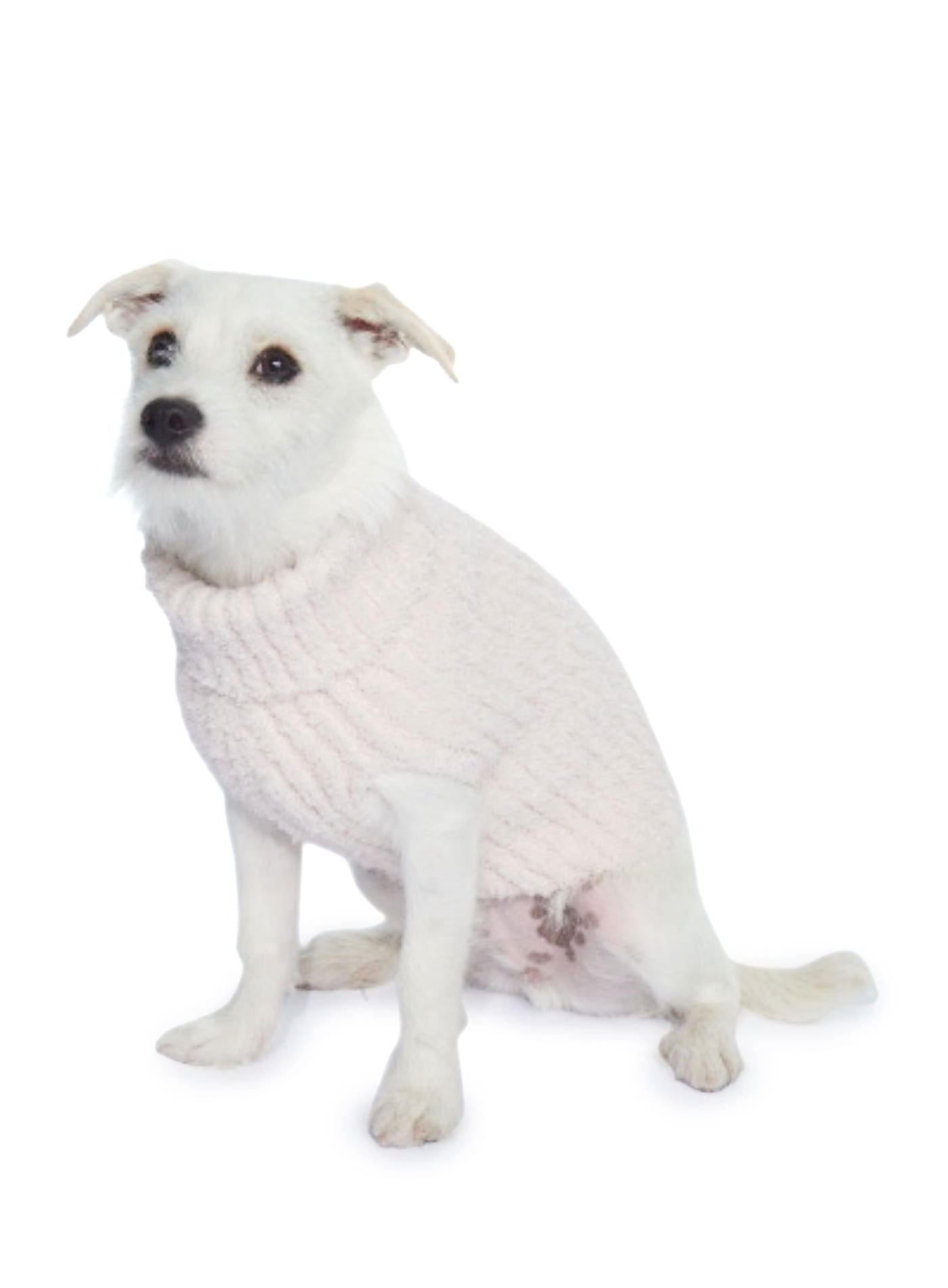 Barefoot Dreams The Cozychic Ribbed Dog Sweater Pink