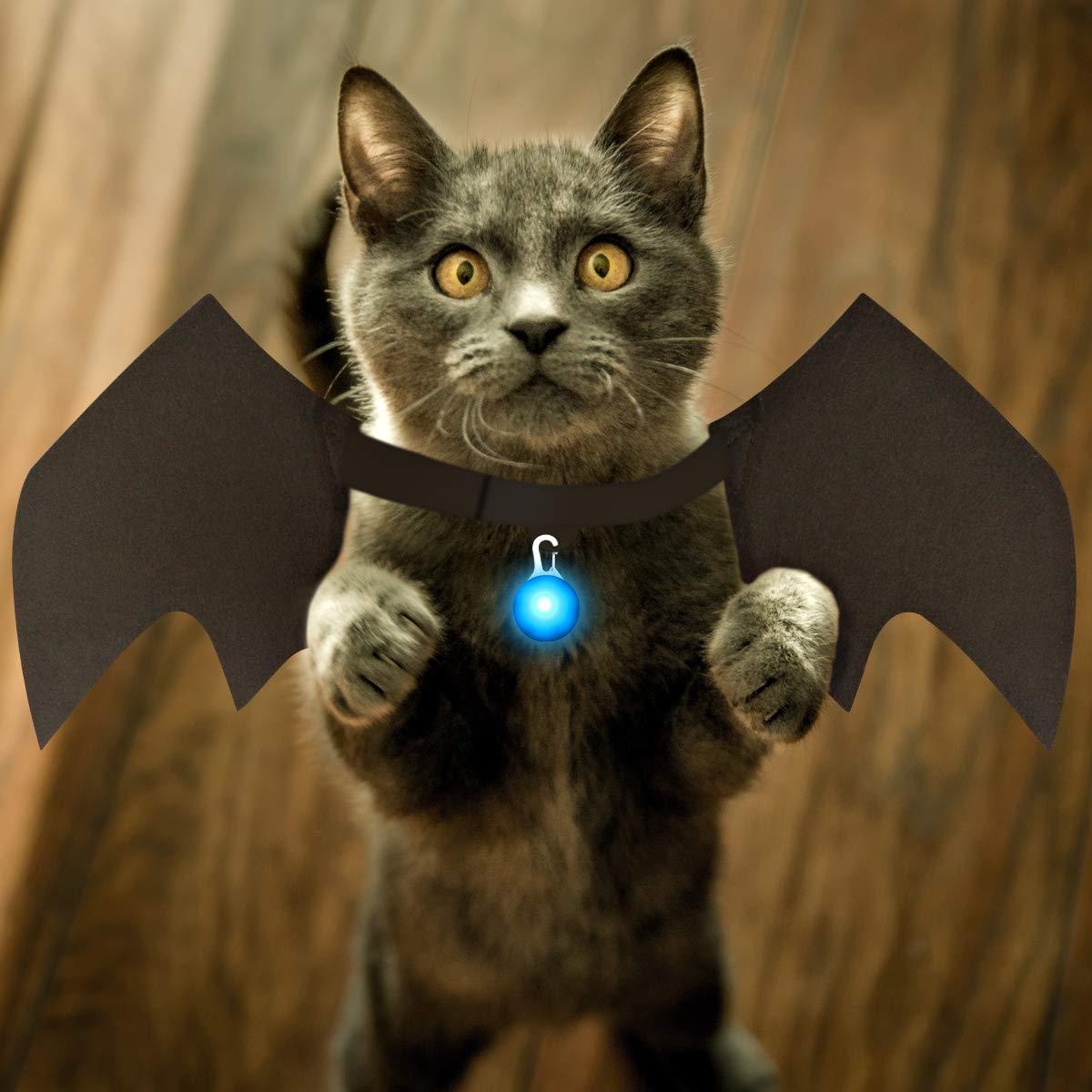 Mitcien cat Halloween Costumes, Dog Halloween Costumes Halloween Pet  Costume pet Supplies pet bat Wings Cat Bat Wings Dog Costume Vampire Wings  Fancy