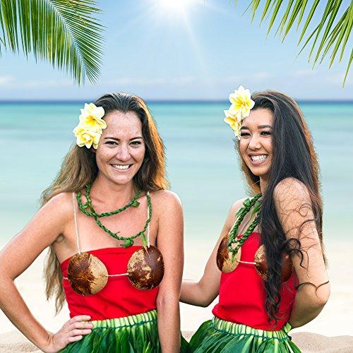 Luau Tiki Coconut Bikini Top (Grass Skirts Party City)