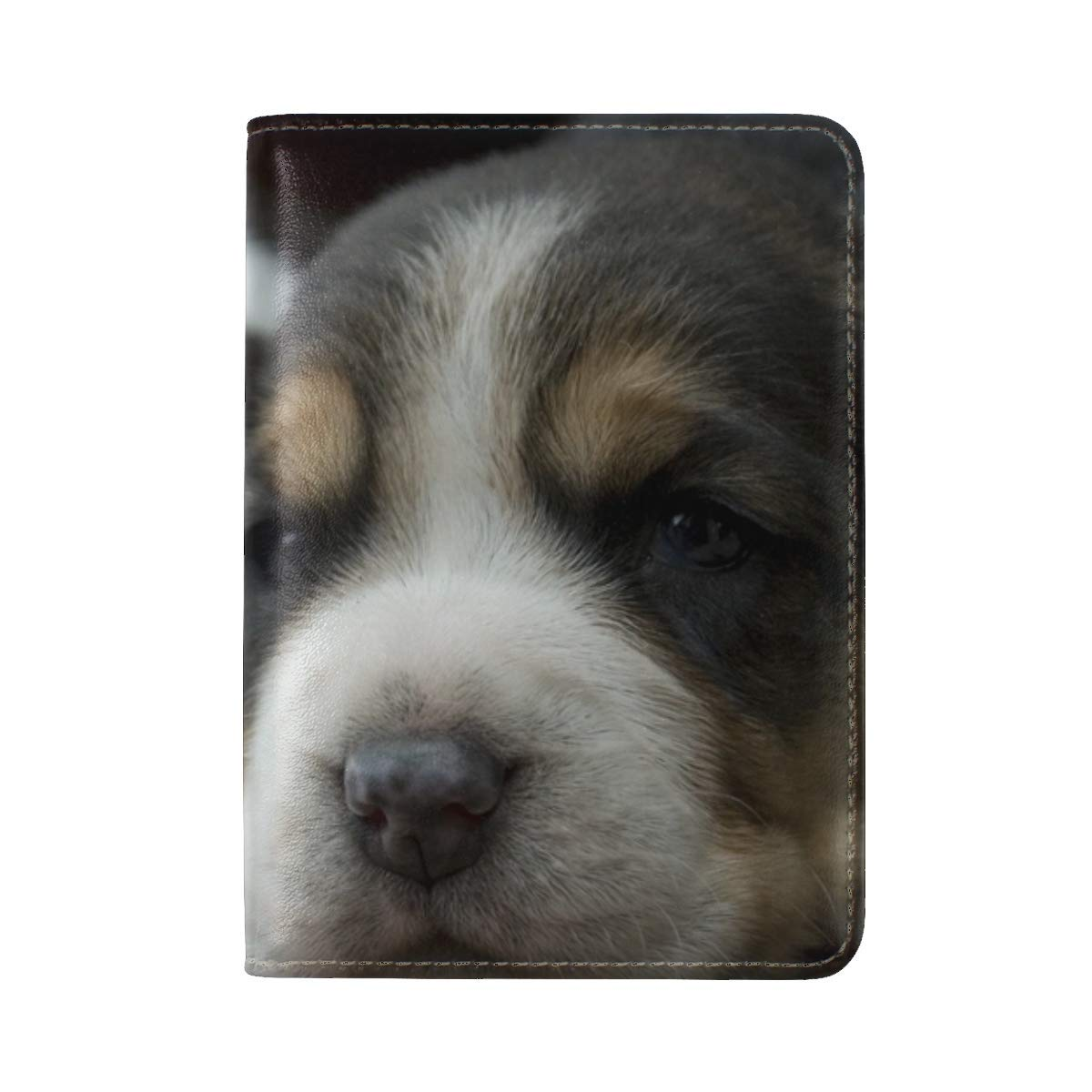 Puppies Dogs Face Spotted Leather Passport Holder Cover Case Travel One Pocket
