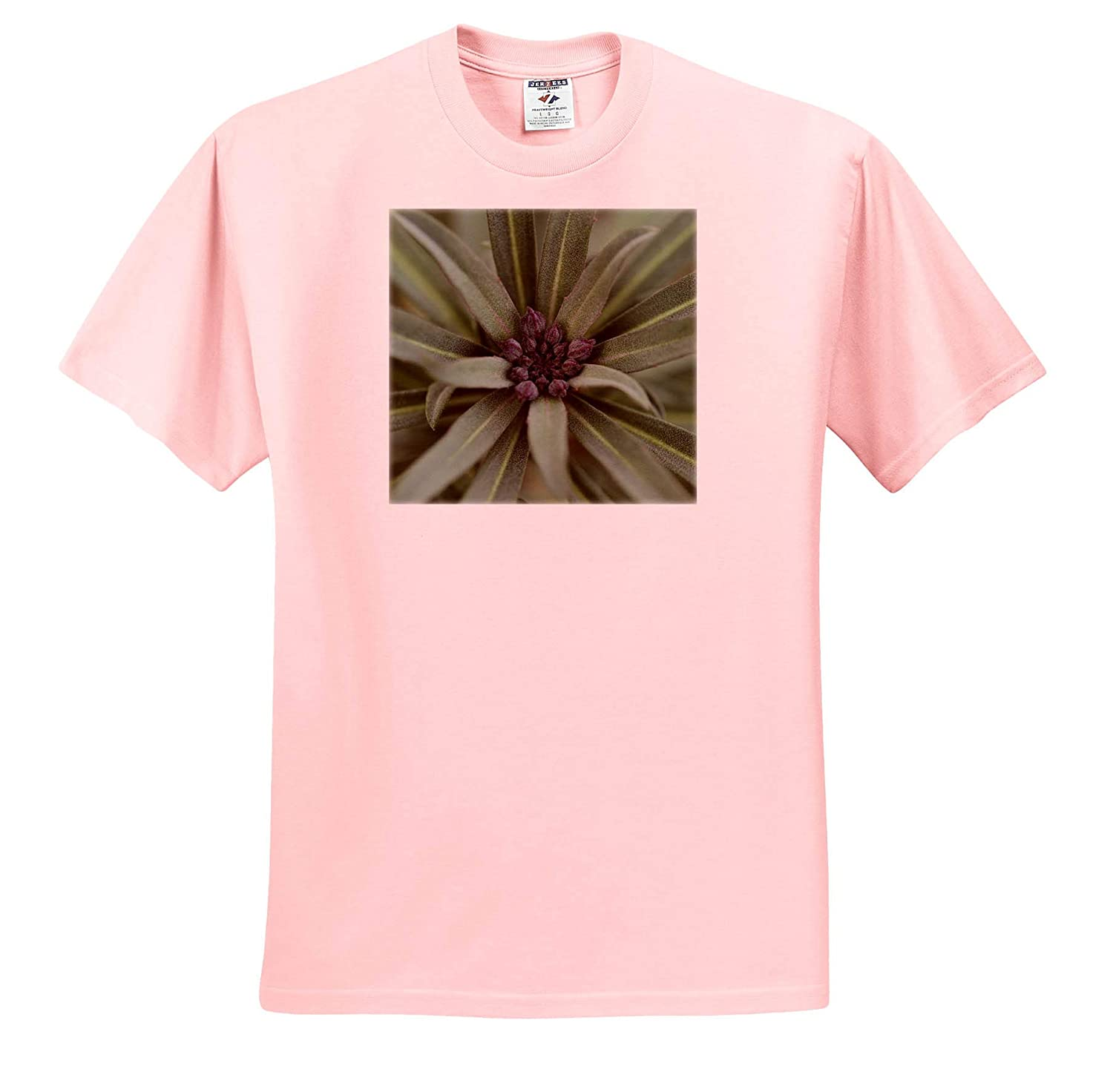 - T-Shirts Flowers 3dRose Stamp City Close up Photograph of a Bowles Mauve WallFlower in The Winter