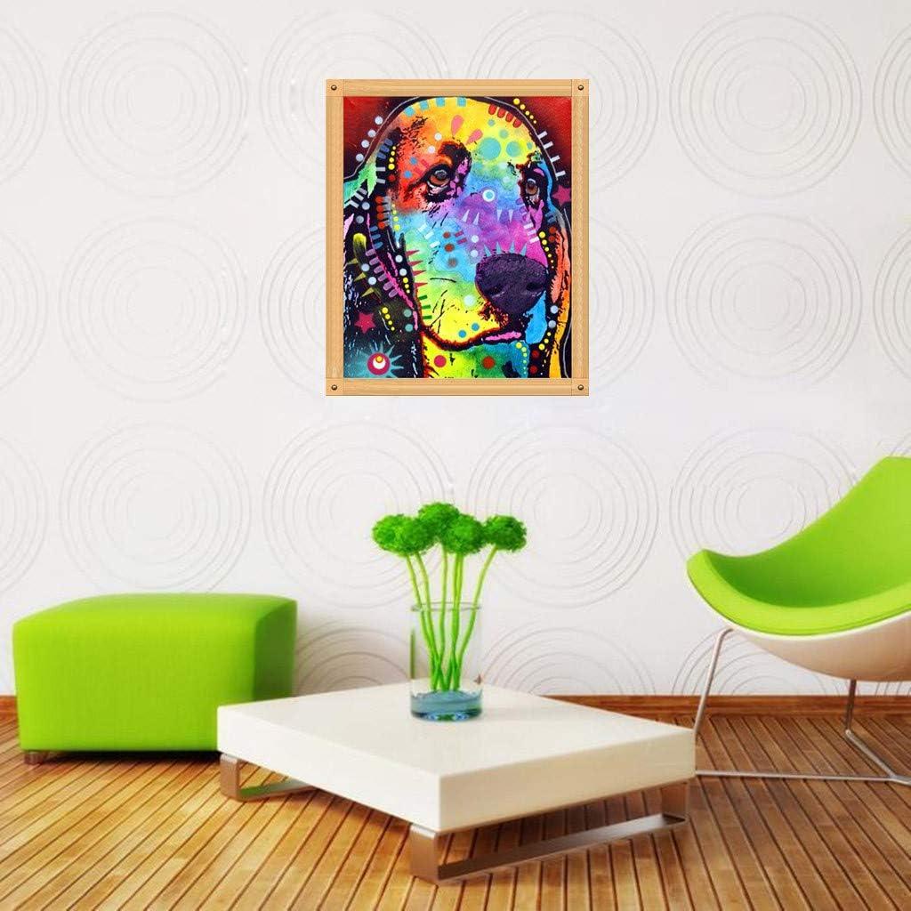 WOBANG 5D - Juego Completo de imágenes de Pintura de Diamantes 5D ...
