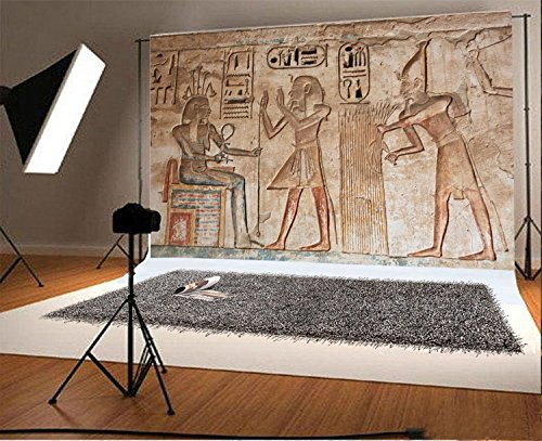 - Laeacco 8x6.5FT Vinyl Backdrop Photography Background Wall Painting Tomb Decoration Ancient Egyptian Gods and Hieroglyphs Carving Art Historic Photo Backdrop Shooting Video TV Production Studio Props