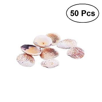 Fische & Aquarien Muscheln Als Dekoration Nr 4 Eine GroßE Auswahl An Farben Und Designs Haustierbedarf