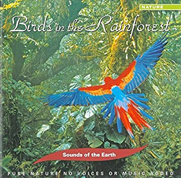Sounds Of Earth: Birds In Rainforest
