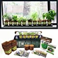 10 Herb Windowsill Garden Kit, Indoor Herb Garden Kit Complete with a 10 Variety Non GMO Heirloom Herb Seed Collection