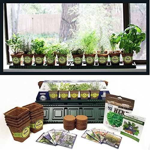 Sustainable Seed Company Windowsill Herb Garden Kit, Indoor Herb Garden Kit Complete with a 10 Variety Non GMO Heirloom Herb Seed Collection - Windowsill Herb