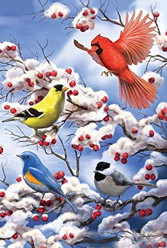Toland-Home-Garden-Finch-And-Cardinal-28-x-40-Inch-Decorative-Winter-Bird-Berries-House-Flag