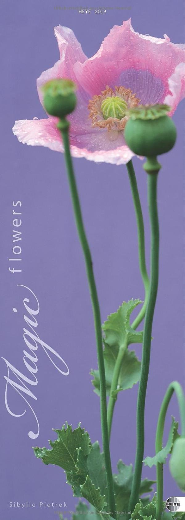 Magic Flowers Vertical 2013