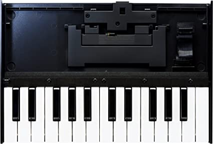 Roland K-25M Keyboard for Boutique Synth Modules - New