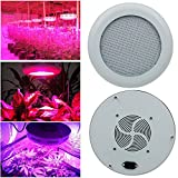 LVJING 300W UFO Led Grow Light Panel Full Spectrum, 277LED, with UV / IR, for Indoor Plants Garden Greenhouse Hydroponic Growing Review