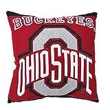 Best DS Bath Pillows - 1 Piece NCAA Buckeyes Theme Woven Throw Pillow Review