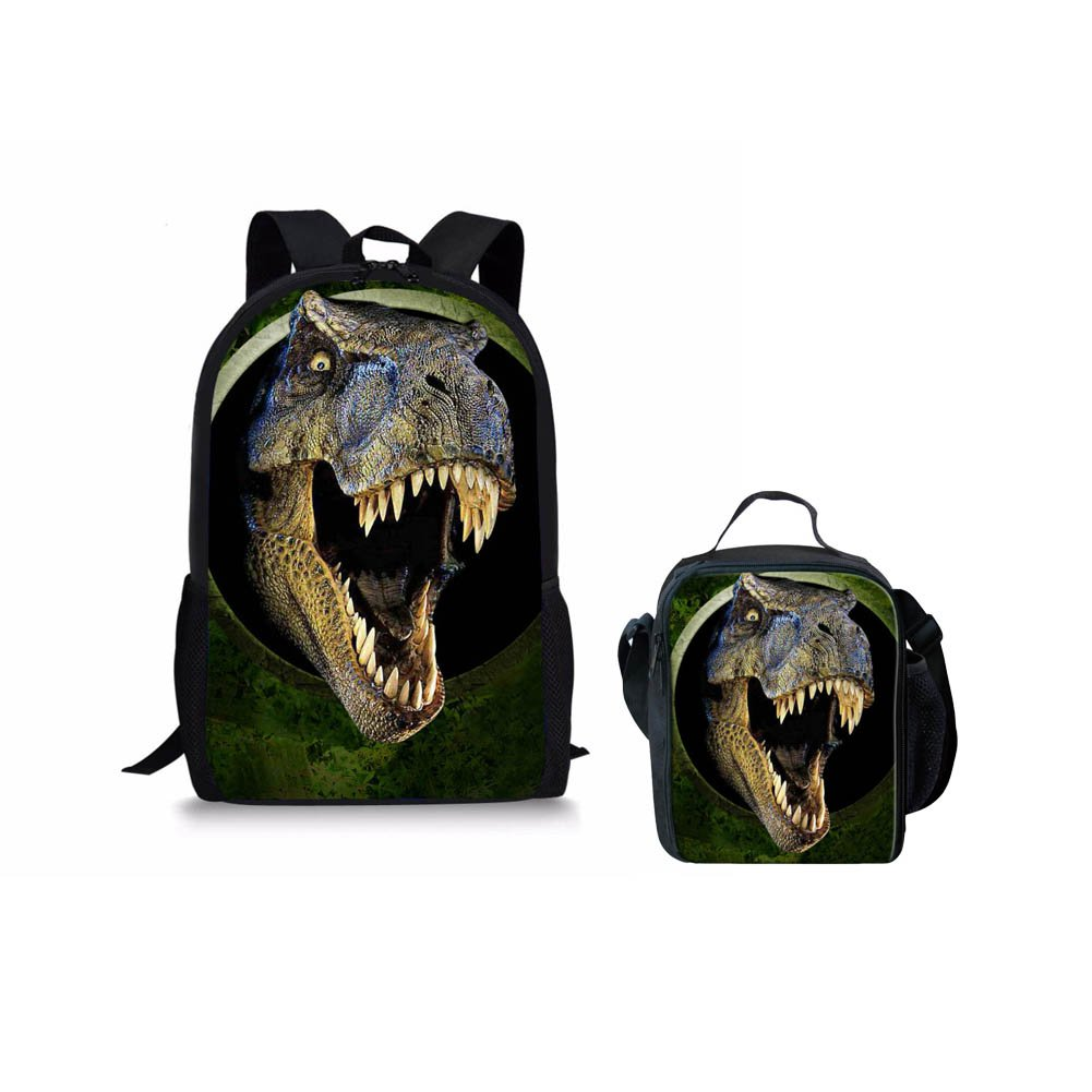 Amazon.com | Instantarts Cool Dinosaur Pattern Durable School Book Bags and Insulated Lunchboxes for Kids Boys | Kids Backpacks