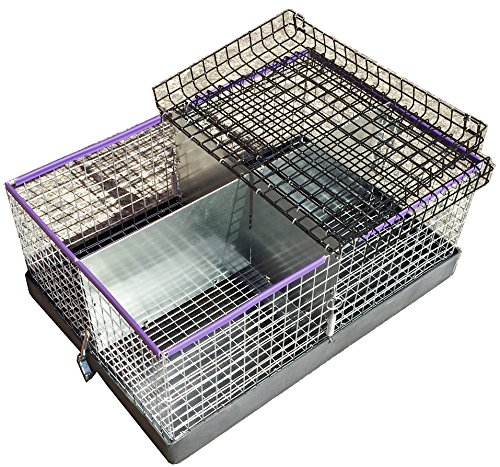 BRcom Deluxe 4 Compartment Carrier Transport Cage 16x24 w...