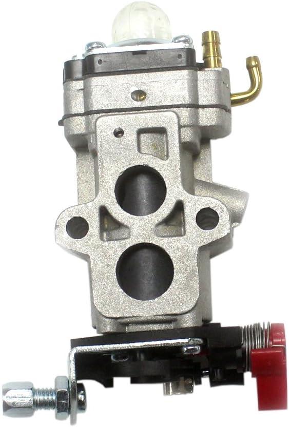 AISEN Carburetor Carb Gasket Check Valve Fuel Line Filter for ...