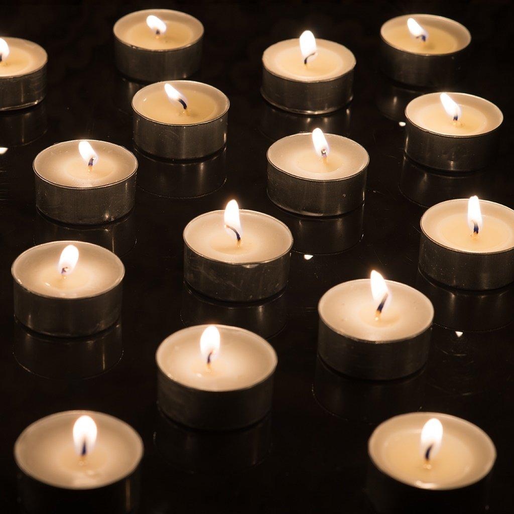 GoodLight bougies chauffe-plat sans paraffine 48 unit/és