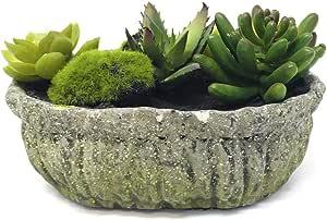 نبات صناعي بوعاء