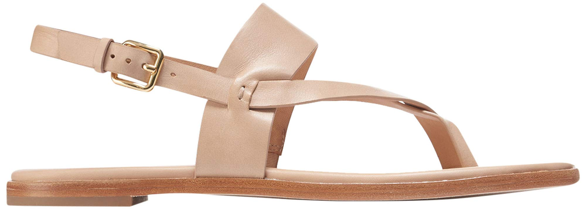 2c568b57721 Galleon - Cole Haan Women s Anica Thong Sandal Flat