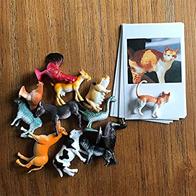 Esoes Animal Model Card - 12 Sets of Miniature Farm Animal Toy Figurines with Matching Cards - Montessori Learning Toy, Language Materials Busy Bag Activity (11x7cm): Garden & Outdoor