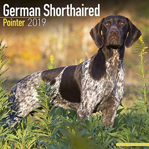Calendar Pointer (German Shorthair Pointer Calendar 2019 - Dog Breed Calendar - Wall Calendar 2018-2019)