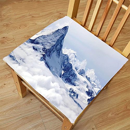 Nalahome Set of 2 Waterproof Cozy Seat Protector Cushion Lake House Decor Scenery of Mountain Summit Magical Scenery Natural Paradise Pattern Black White Printing Size 20x20inch (Dryer Summit Washer)