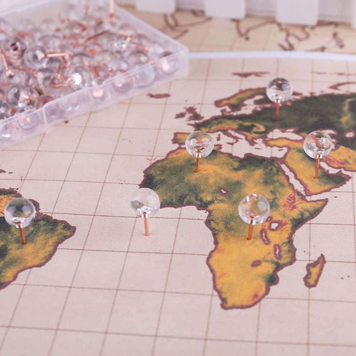 100St/ück Pinnadeln Stecknadeln mit Stahl Punkt Ros/égold Markierungsnadeln Rundkopfnadeln Pinwandnadeln Karte Nagel Runder Kopf Nadel Map Push Pins Landkartennadeln mit Transparentbox-Nadell/änge 10mm