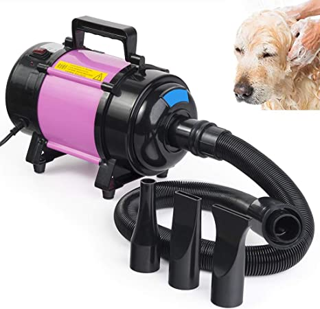 DX Peluquería para Mascotas Secador de Pelo Velocidad del Viento sin escalones Profesional Secador de Gatos para Perros con desinfección con ozono 2 Temperatura del Engranaje Soplador de Piel B: Amazon.es: Hogar