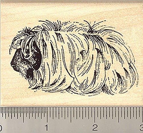 Peruvian Guinea Pig Rubber Stamp, Long Hair