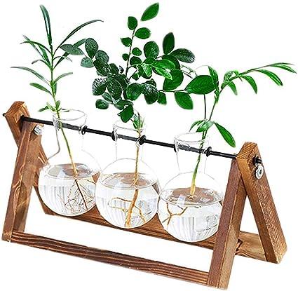 DESKTOP GLASS CLEAR BULB PLANTER WOODEN STAND PLANT COBBLE FLOWER VASE DECOR