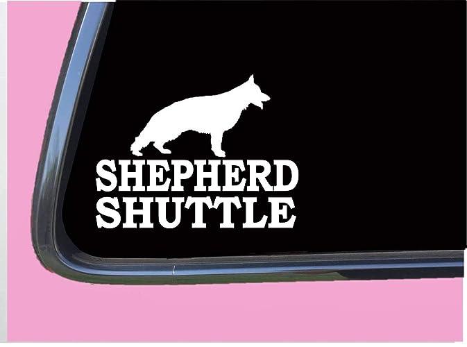 Shepherd Shuttle TP 381 6