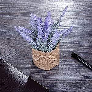 YAPASPT 2 Pack Small Burlap Potted Lavender Flowers - Artificial Fake Flower and Plant Flocked Charming Purple for Warm and Loving Home or Venue Decor 2