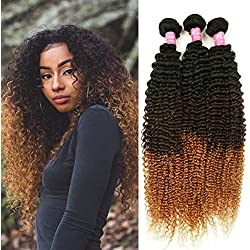 Mink Hair 3 Tone Ombre Color Kinky Curly Hair (16 inch) 8A Grade Brazilian Virgin Human Hair Extension 1B/4/27# Kinky Curly Weave Hair Bundles 100g/pc