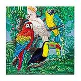 CafePress - Tropical Birds 37X