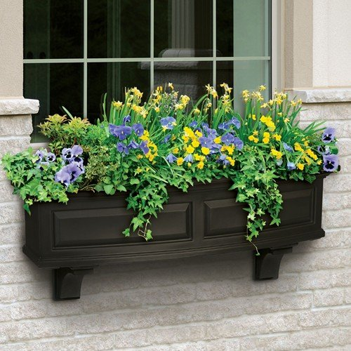 Mayne Nantucket 48'' Window Box Combo with Corbel Brackets - Black 4' by Home Wishes