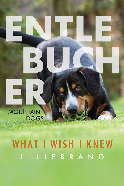 Entlebucher Mountain Dogs   What I Wish I Knew